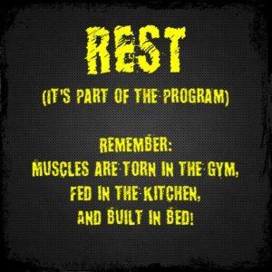 simple beginner muscle growth guide